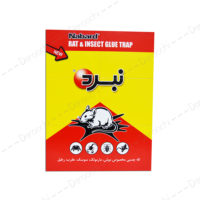 Nabard-rat-and-insect-glue-trap